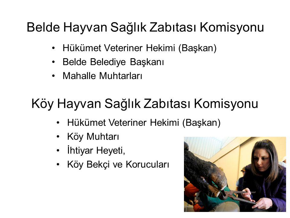 Belde Hayvan Sağlık Zabıtası Komisyonu •Hükümet Veteriner Hekimi (Başkan) •Belde Belediye Başkanı •Mahalle Muhtarları Köy Hayvan Sağlık Zabıtası Komis