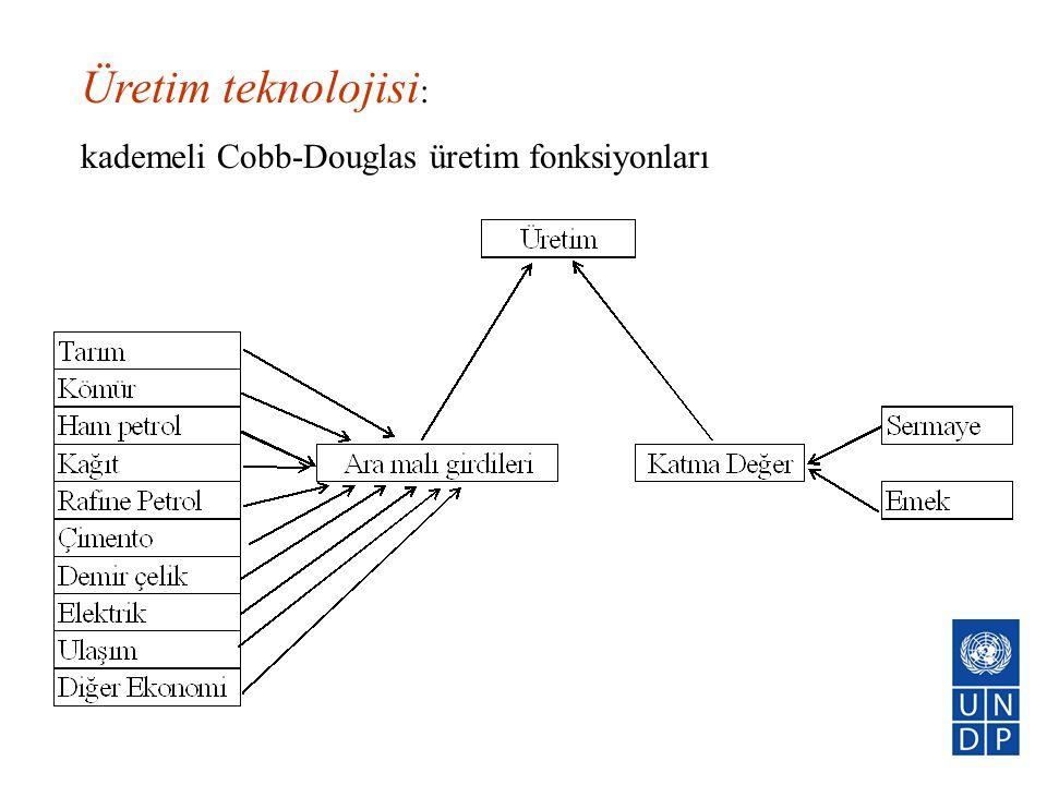 Üretim teknolojisi : kademeli Cobb-Douglas üretim fonksiyonları