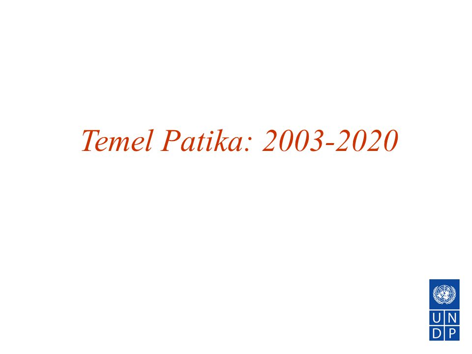 Temel Patika: 2003-2020