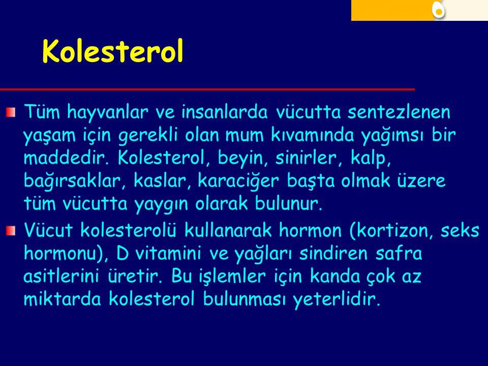 Kolesterol Tüm hayvanlar ve insanlarda vücutta sentezlenen yaşam için gerekli olan mum kıvamında yağımsı bir maddedir. Kolesterol, beyin, sinirler, ka