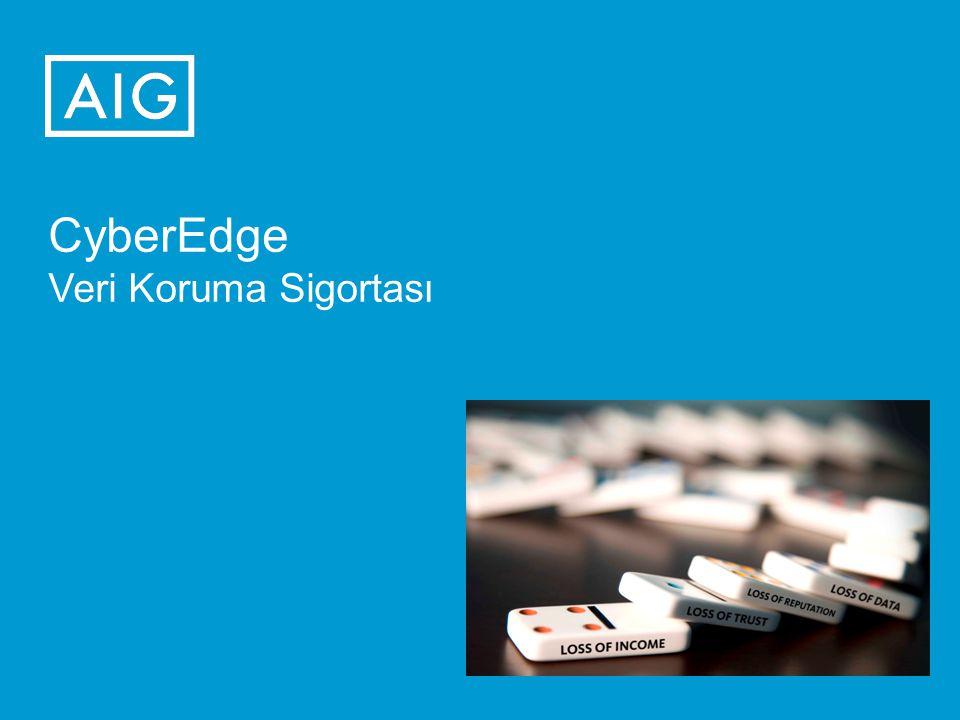 CyberEdge Veri Koruma Sigortası