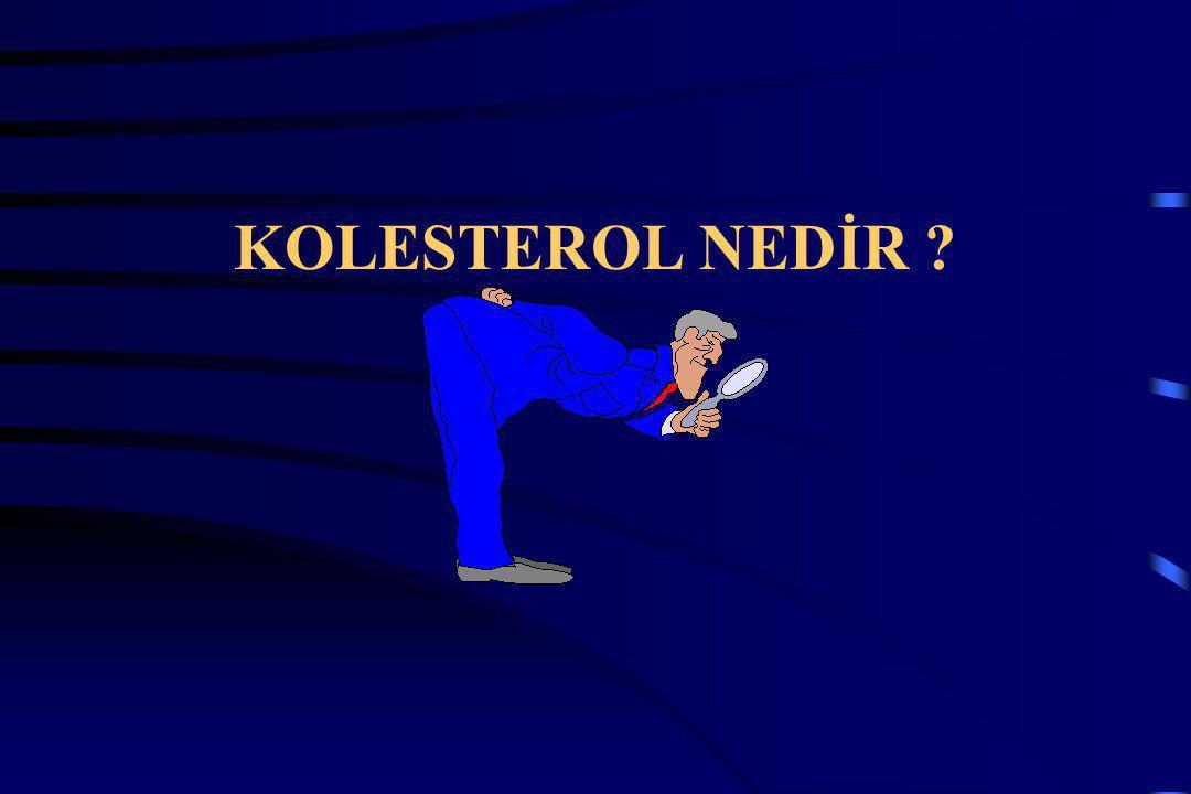 Kolesterol, yaşam için gerekli olan mum kıvamında yağımsı bir maddedir.