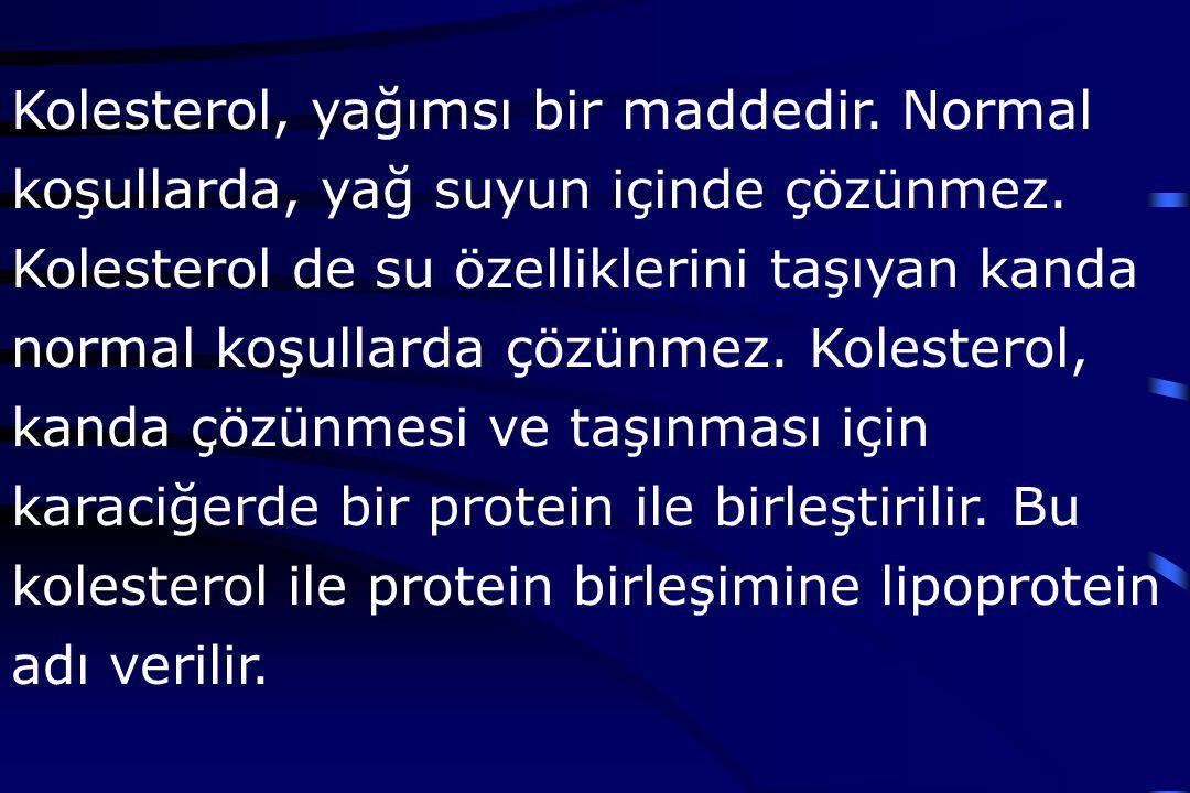 Değişik tipte lipoproteinler vardır: LDL (Low Density Lipoprotein, düşük yoğunluklu lipoprotein): Kötü huylu kolesteroldür.