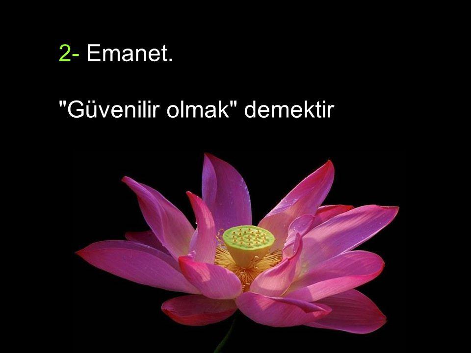 2- Emanet.