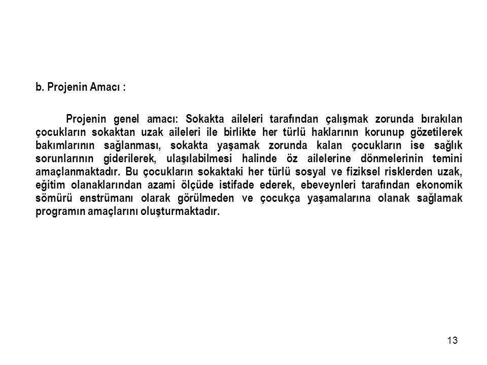 12 T.C. İSTANBUL VALİLİĞİ SOKAKTA YAŞAYAN VE ÇALIŞTIRILAN ÇOCUKLARIN KORUNMASI PROJESİ a. Projenin Gerekçesi : İstanbul İli yoğun göç alan, nüfus yoğu