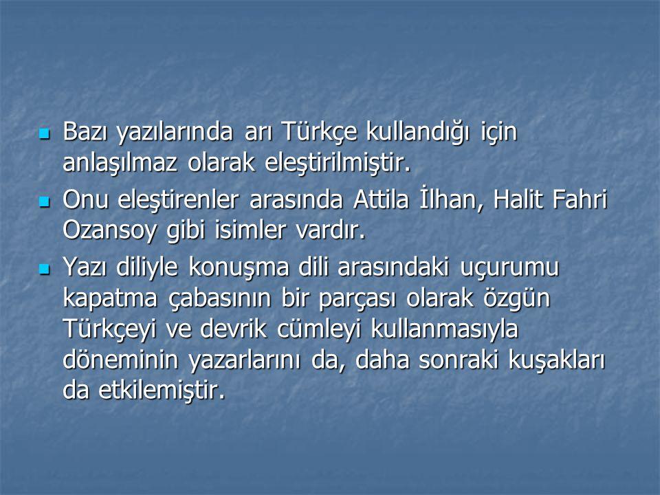  Bazı yazılarında arı Türkçe kullandığı için anlaşılmaz olarak eleştirilmiştir.  Onu eleştirenler arasında Attila İlhan, Halit Fahri Ozansoy gibi is
