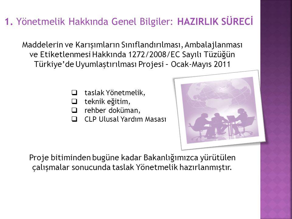 1. Yönetmelik Hakkında Genel Bilgiler: HAZIRLIK SÜRECİ Maddelerin ve Karışımların Sınıflandırılması, Ambalajlanması ve Etiketlenmesi Hakkında 1272/200