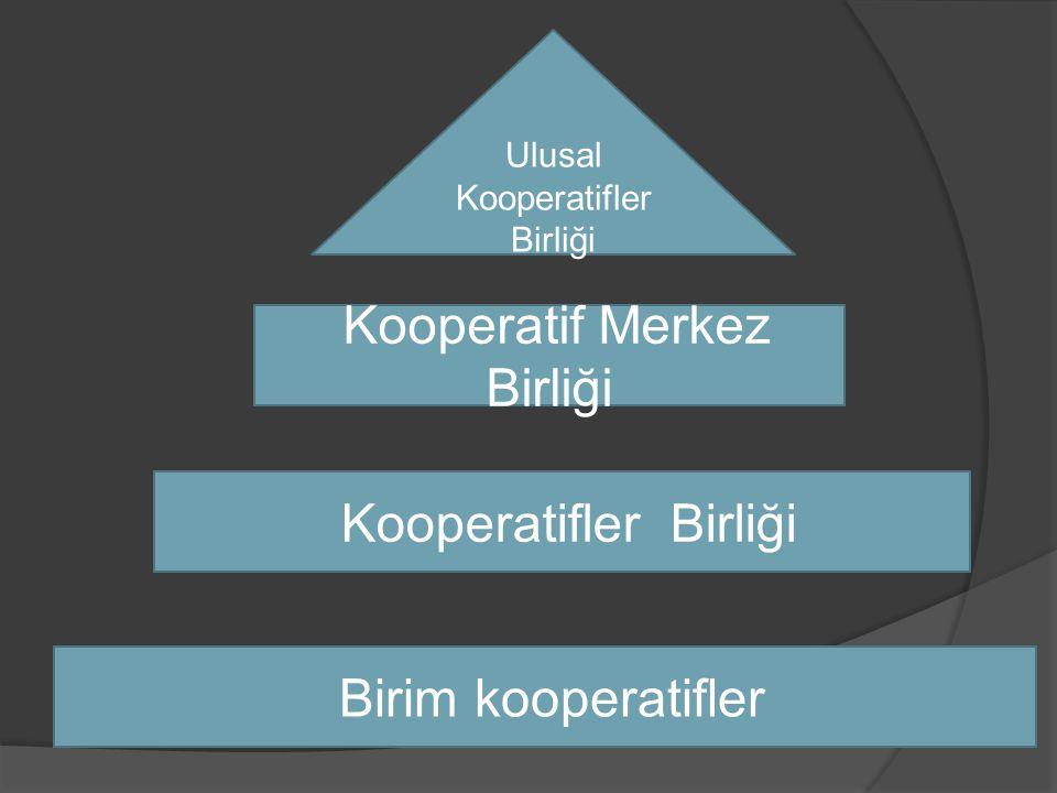 Birim kooperatifler Kooperatifler Birliği Kooperatif Merkez Birliği Ulusal Kooperatifler Birliği