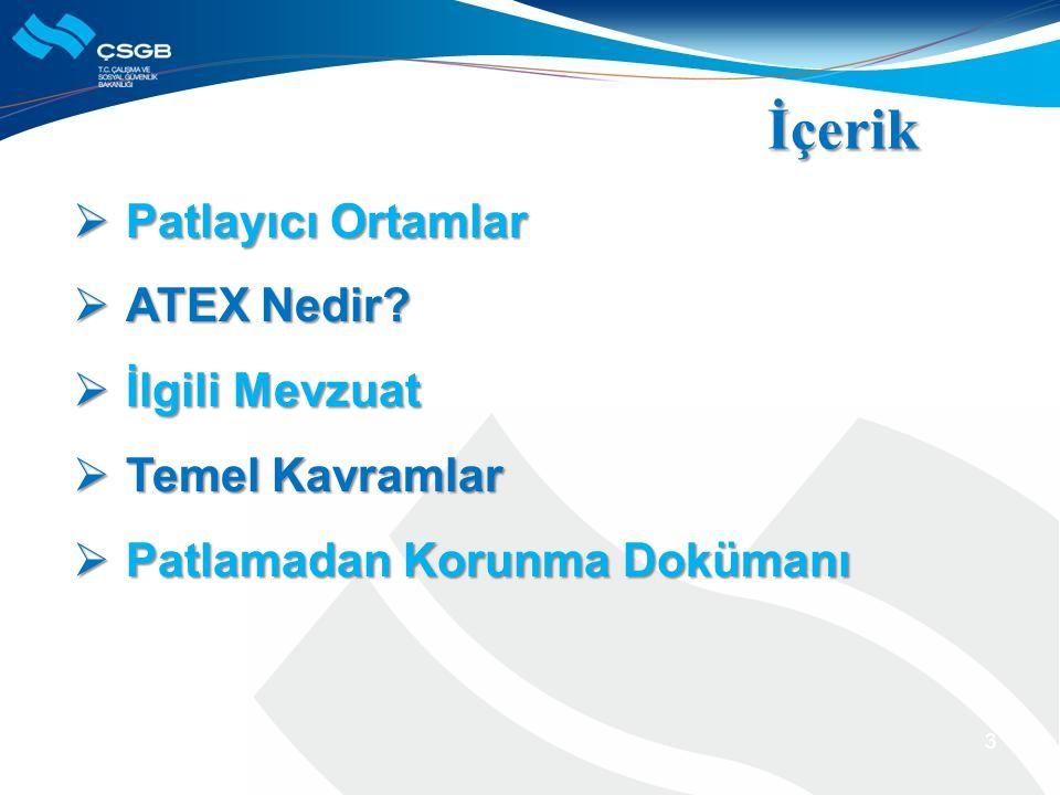Hande Seray TUNCAY İSG Uzman Yardımcısı htastekin@csgb.gov.tr İSTANBUL, 2014