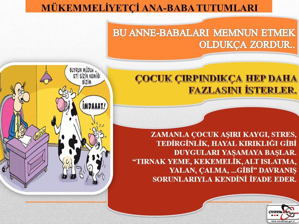 OTOİRTER-ELEŞTİRİCİ ANNE-BABALAR