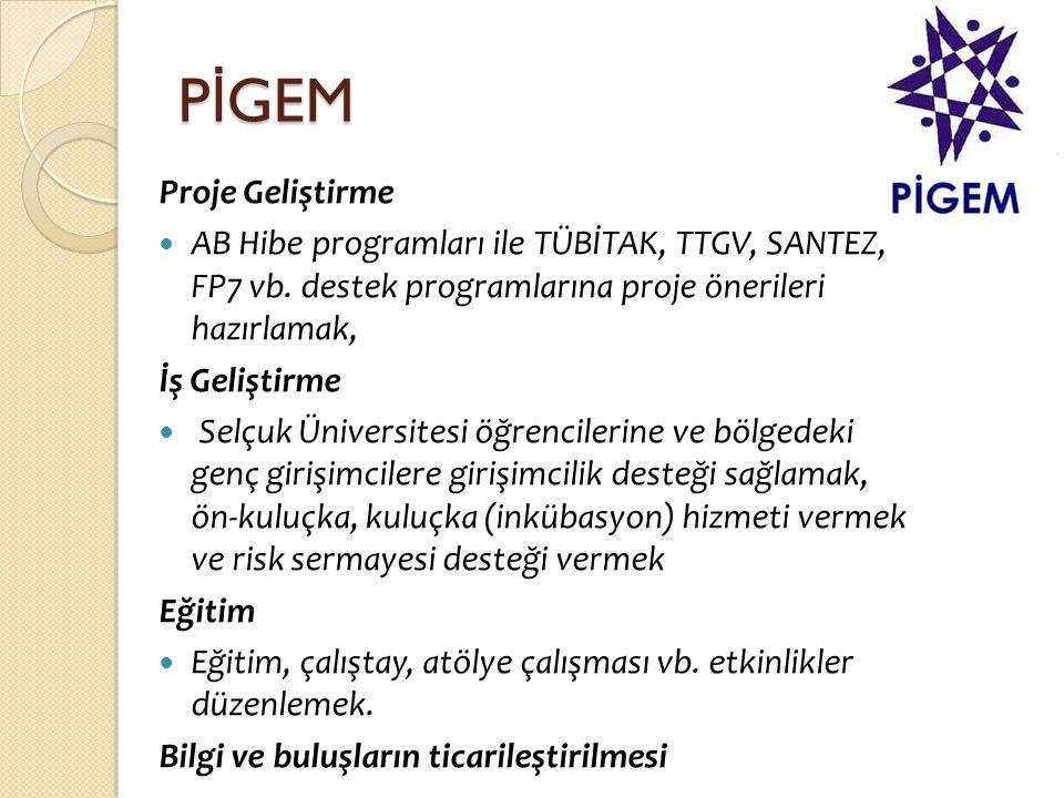 P İ GEM Proje Geliştirme  AB Hibe programları ile TÜBİTAK, TTGV, SANTEZ, FP7 vb. destek programlarına proje önerileri hazırlamak, İş Geliştirme  Sel