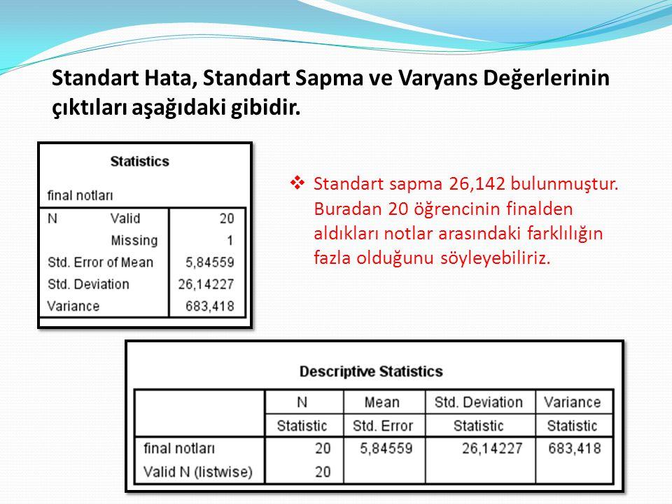 Standart Hata, Standart Sapma ve Varyans Değerlerinin çıktıları aşağıdaki gibidir.