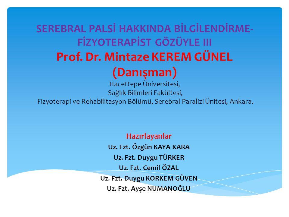 SEREBRAL PALSİ HAKKINDA BİLGİLENDİRME- FİZYOTERAPİST GÖZÜYLE III Prof. Dr. Mintaze KEREM GÜNEL (Danışman) Hacettepe Üniversitesi, Sağlık Bilimleri Fak