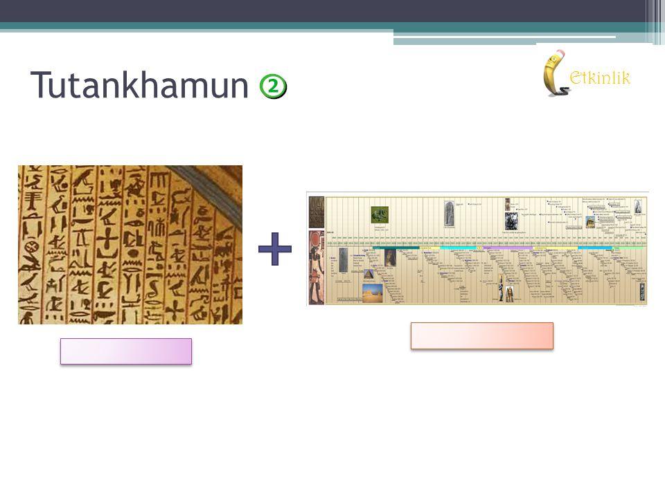 Sonuç: Tutankhamun'un fiziksel özellikleri, elde edilen veriler ile bilgisayar ortamında hazırlanmış, yaşına, ülkeyi nasıl yönettiğine ve kişiliğine dair pek çok sonuca ulaşılmıştır.