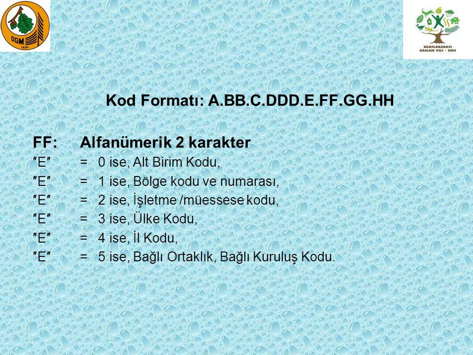 Kod Formatı: A.BB.C.DDD.E.FF.GG.HH GG: Nümerik 2 karakter ″E″= 0 ise, İkinci Alt Birim Kodu, (Şube ise″HH″ seviyesinde kodlamak uygun olur.) ″E″= 1 ise, Bölgenin Alt Birim Kodu, (Şube ise″HH″ seviyesinde kodlamak uygun olur.) ″E″= 2 ise, İşletme/Müessese'nin Alt Birim Kodu, ″E″= 3 ise, Ülke nin Şehir Kodu, ″E″= 4 ise, İlçenin Kodu, ″E″= 5 ise, Bağlı Ortaklık, Bağlı Kuruluşun Altı Birim Kodu.