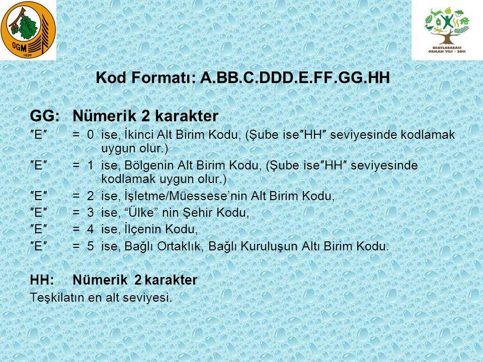 Kod Formatı: A.BB.C.DDD.E.FF.GG.HH GG: Nümerik 2 karakter ″E″= 0 ise, İkinci Alt Birim Kodu, (Şube ise″HH″ seviyesinde kodlamak uygun olur.) ″E″= 1 is