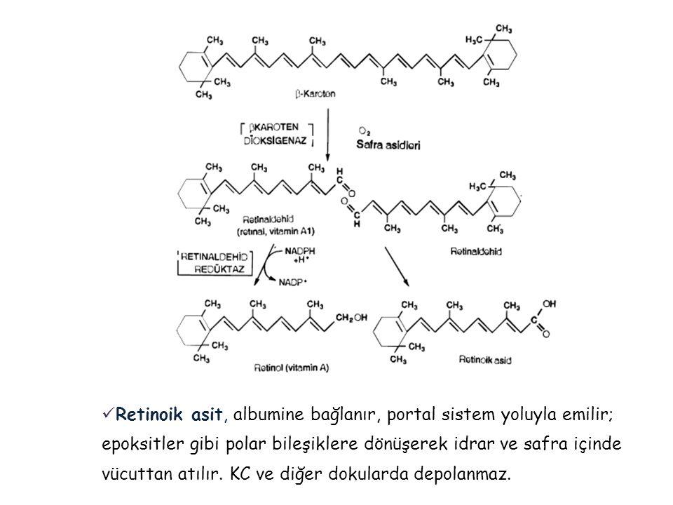  Retinoik asit, albumine bağlanır, portal sistem yoluyla emilir; epoksitler gibi polar bileşiklere dönüşerek idrar ve safra içinde vücuttan atılır. K