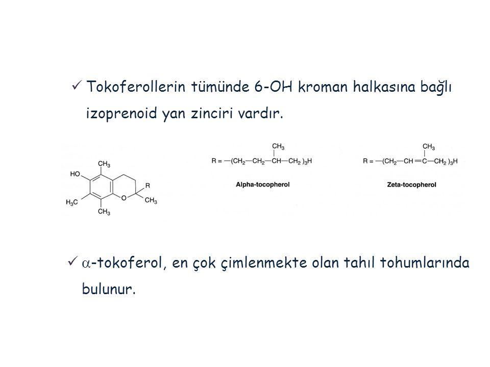  Tokoferollerin tümünde 6-OH kroman halkasına bağlı izoprenoid yan zinciri vardır.   -tokoferol, en çok çimlenmekte olan tahıl tohumlarında bulunur