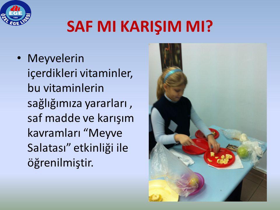 """SAF MI KARIŞIM MI? • Meyvelerin içerdikleri vitaminler, bu vitaminlerin sağlığımıza yararları, saf madde ve karışım kavramları """"Meyve Salatası"""" etkinl"""