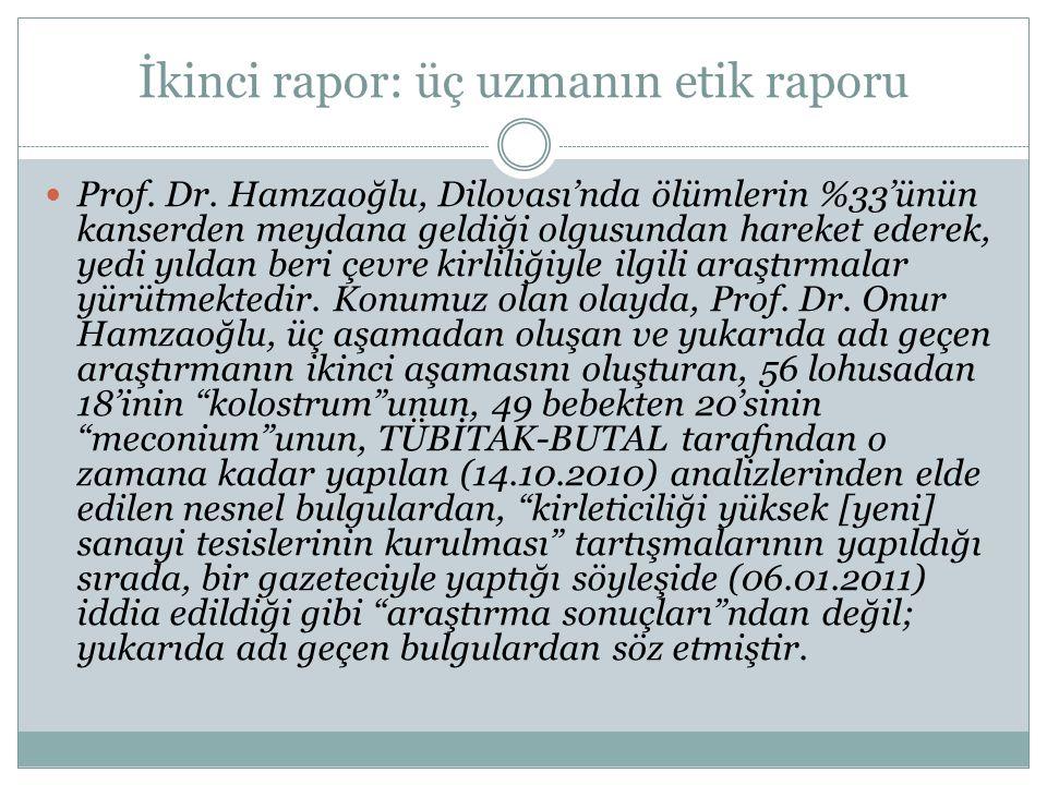İkinci rapor: üç uzmanın etik raporu  Prof. Dr. Hamzaoğlu, Dilovası'nda ölümlerin %33'ünün kanserden meydana geldiği olgusundan hareket ederek, yedi