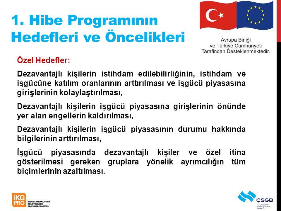 1. Hibe Programının Hedefleri ve Öncelikleri Özel Hedefler: Dezavantajlı kişilerin istihdam edilebilirliğinin, istihdam ve işgücüne katılım oranlarını
