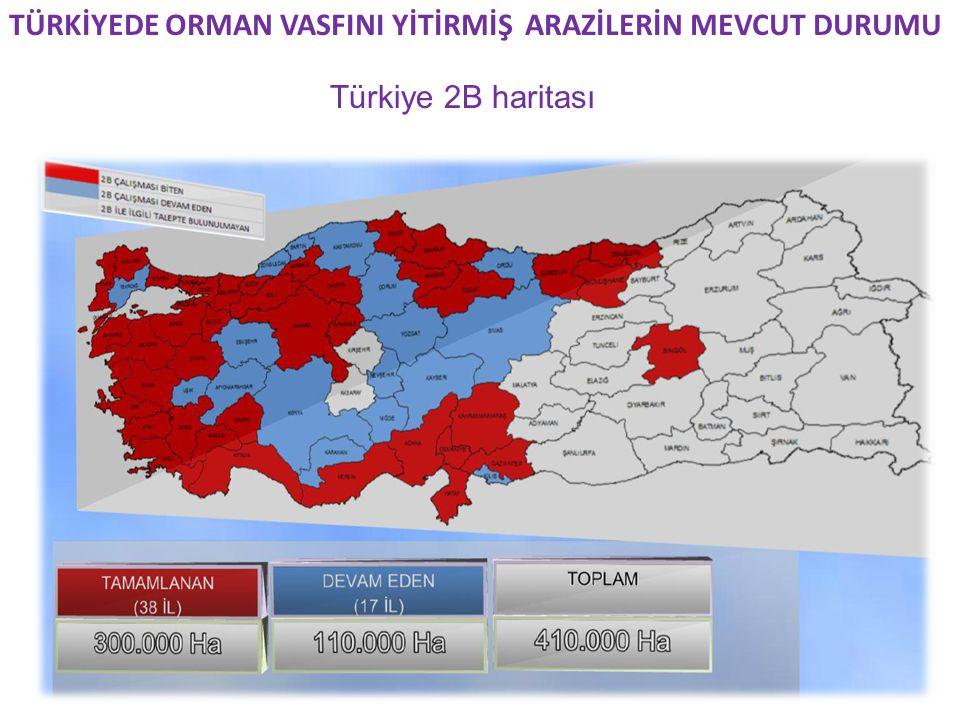 TÜRKİYEDE ORMAN VASFINI YİTİRMİŞ ARAZİLERİN MEVCUT DURUMU Türkiye 2B haritası