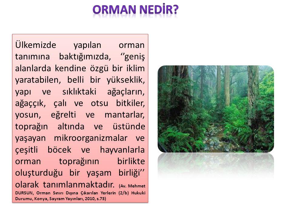 Ülkemizde yapılan orman tanımına baktığımızda, ''geniş alanlarda kendine özgü bir iklim yaratabilen, belli bir yükseklik, yapı ve sıklıktaki ağaçların