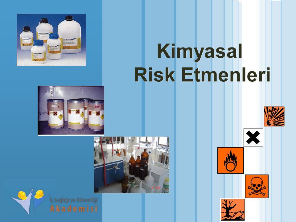 www.themegallery.com LOGO Kimyasal Risk Etmenleri