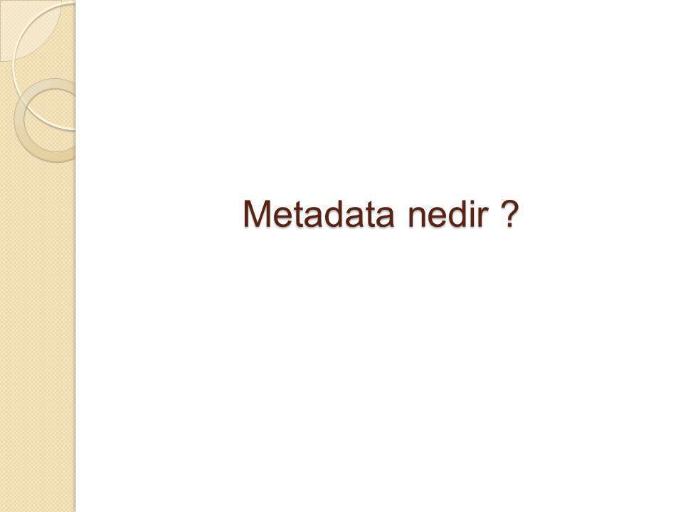 Metadata nedir ?