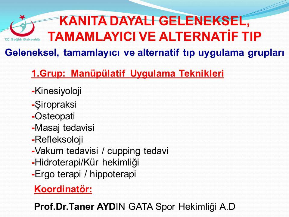 Geleneksel, tamamlayıcı ve alternatif tıp uygulama grupları 2.
