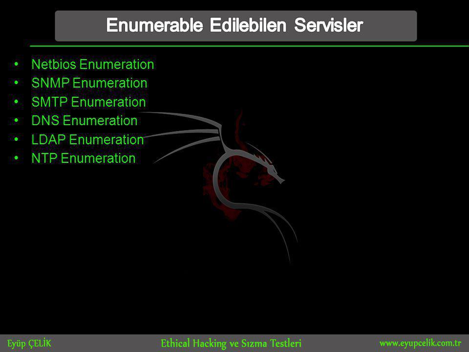 • Netbios Enumeration • SNMP Enumeration • SMTP Enumeration • DNS Enumeration • LDAP Enumeration • NTP Enumeration