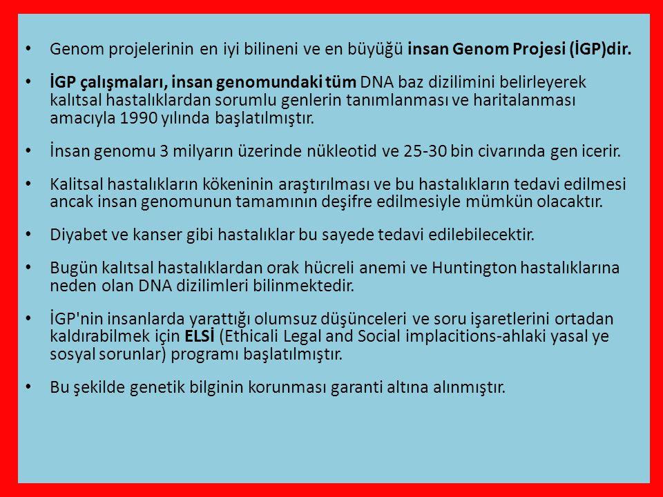 • Genom projelerinin en iyi bilineni ve en büyüğü insan Genom Projesi (İGP)dir.