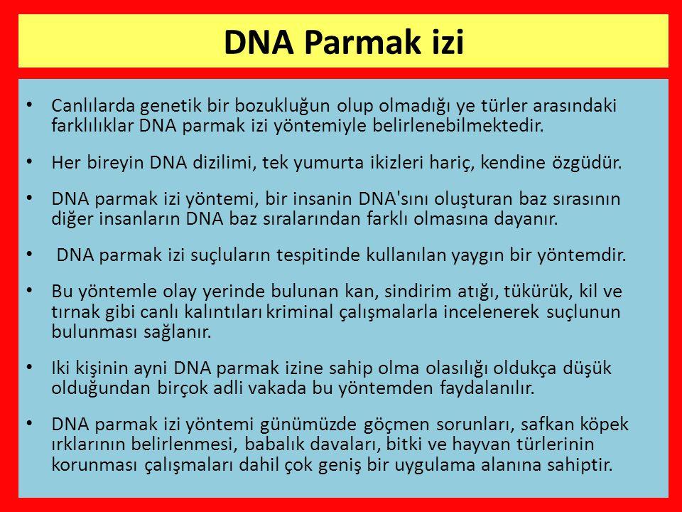 • Canlılarda genetik bir bozukluğun olup olmadığı ye türler arasındaki farklılıklar DNA parmak izi yöntemiyle belirlenebilmektedir.