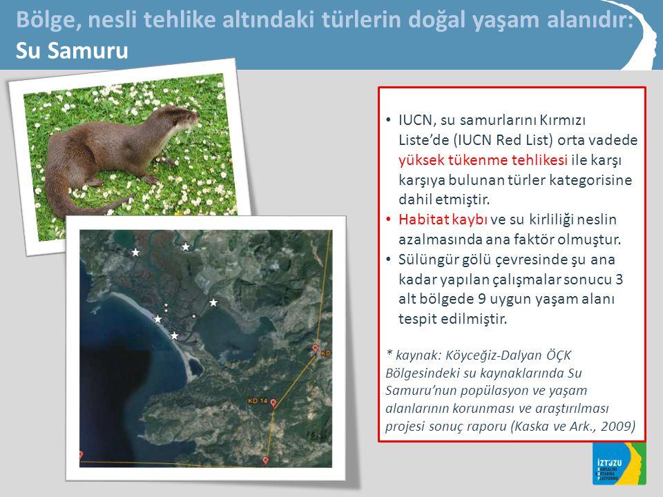 Bölge, nesli tehlike altındaki türlerin doğal yaşam alanıdır: Su Samuru • IUCN, su samurlarını Kırmızı Liste'de (IUCN Red List) orta vadede yüksek tükenme tehlikesi ile karşı karşıya bulunan türler kategorisine dahil etmiştir.