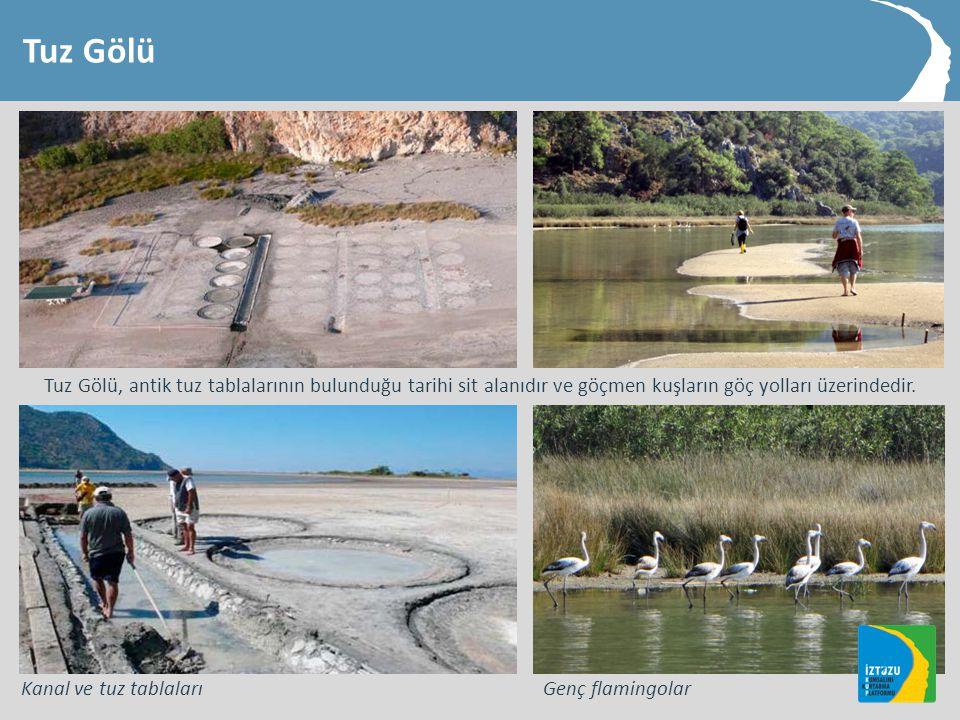Tuz Gölü Tuz Gölü, antik tuz tablalarının bulunduğu tarihi sit alanıdır ve göçmen kuşların göç yolları üzerindedir.