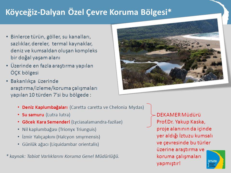 Köyceğiz-Dalyan Özel Çevre Koruma Bölgesi* • Binlerce türün, göller, su kanalları, sazlıklar, dereler, termal kaynaklar, deniz ve kumsaldan oluşan kompleks bir doğal yaşam alanı • Üzerinde en fazla araştırma yapılan ÖÇK bölgesi • Bakanlıkça üzerinde araştırma/izleme/koruma çalışmaları yapılan 10 türden 7'si bu bölgede : • Deniz Kaplumbağaları (Caretta caretta ve Chelonia Mydas) • Su samuru (Lutra lutra) • Göcek Kara Semenderi (Lyciasalamandra-fazilae) • Nil kaplumbağası (Trionyx Triunguis) • İzmir Yalıçapkını (Halcyon smyrnensis) • Günlük ağacı (Liquidambar orientalis) * kaynak: Tabiat Varlıklarını Koruma Genel Müdürlüğü.