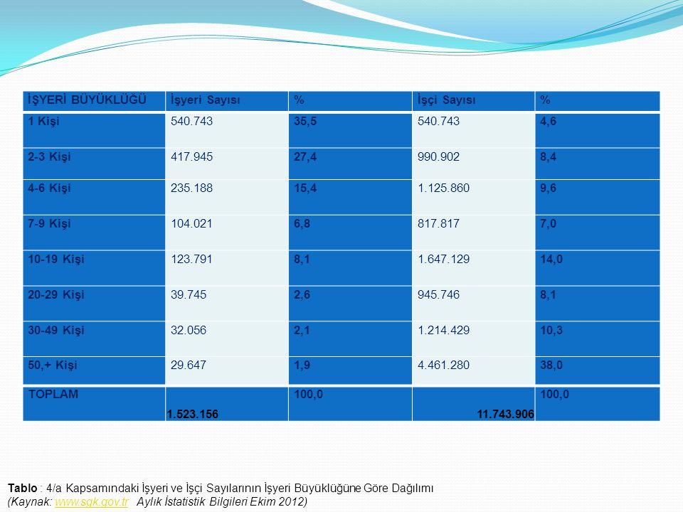 İŞYERİ BÜYÜKLÜĞÜİşyeri Sayısı%İşçi Sayısı% 1 Kişi540.74335,5540.743 4,6 2-3 Kişi417.94527,4990.9028,4 4-6 Kişi235.18815,41.125.860 9,6 7-9 Kişi104.021