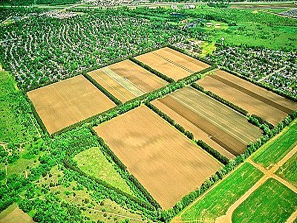 Tarım Reformu uygulama alanlarındaki yerleşim birimlerinde; yaşanabilir mekanların oluşturulması, düzensiz yapılaşma ve tarım alanlarındaki yapılaşmanın önlenmesi amacıyla, köy imar planlama çalışmaları yapılmaktadır