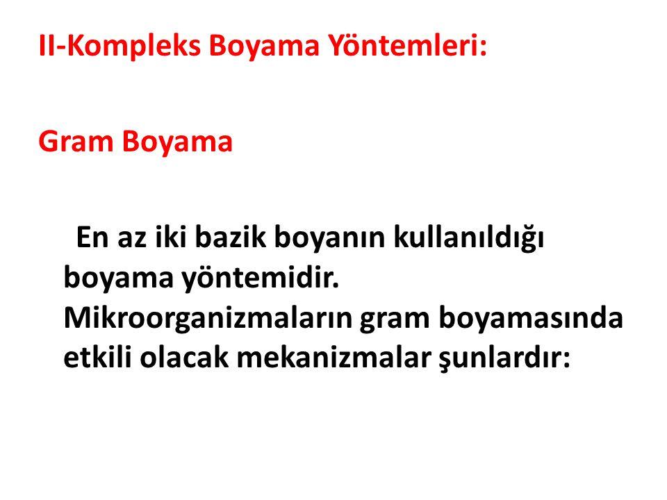 II-Kompleks Boyama Yöntemleri: Gram Boyama En az iki bazik boyanın kullanıldığı boyama yöntemidir.