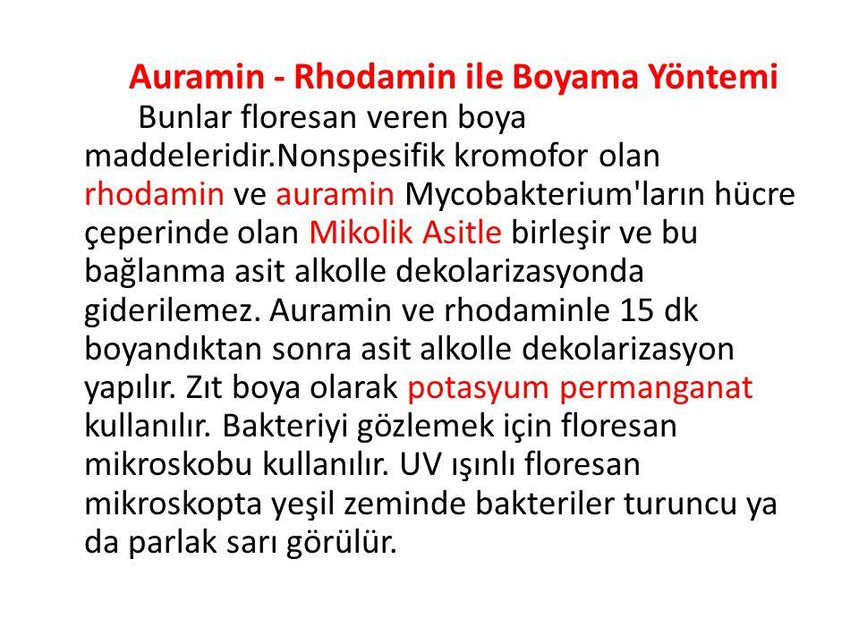 Auramin - Rhodamin ile Boyama Yöntemi Bunlar floresan veren boya maddeleridir.Nonspesifik kromofor olan rhodamin ve auramin Mycobakterium ların hücre çeperinde olan Mikolik Asitle birleşir ve bu bağlanma asit alkolle dekolarizasyonda giderilemez.
