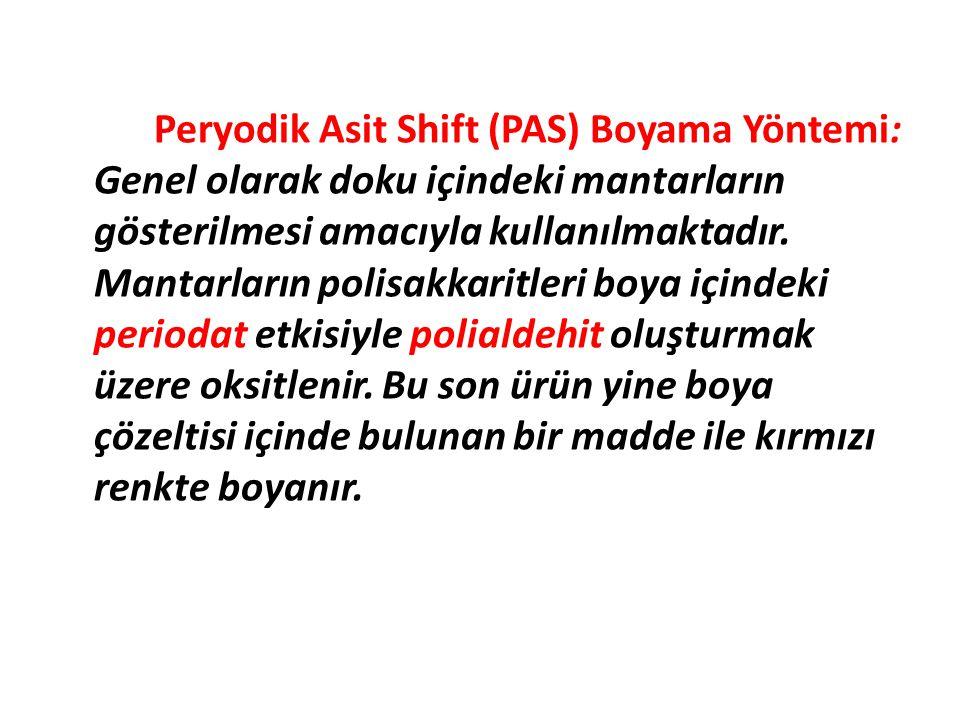 Peryodik Asit Shift (PAS) Boyama Yöntemi: Genel olarak doku içindeki mantarların gösterilmesi amacıyla kullanılmaktadır.