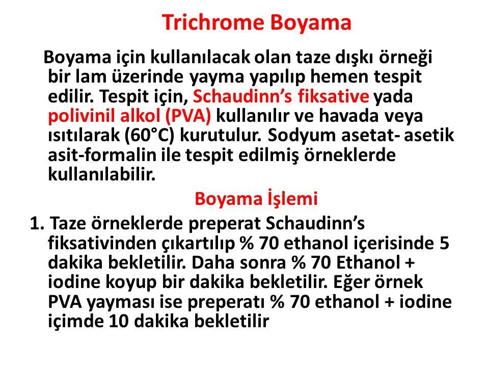 Trichrome Boyama Boyama için kullanılacak olan taze dışkı örneği bir lam üzerinde yayma yapılıp hemen tespit edilir.