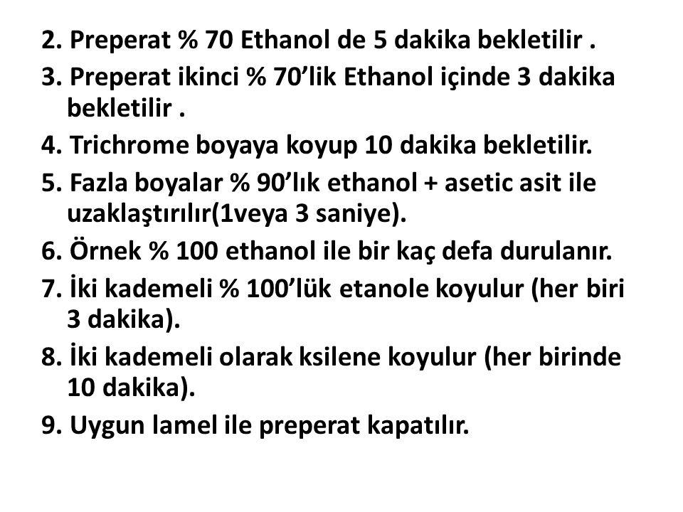 2.Preperat % 70 Ethanol de 5 dakika bekletilir. 3.