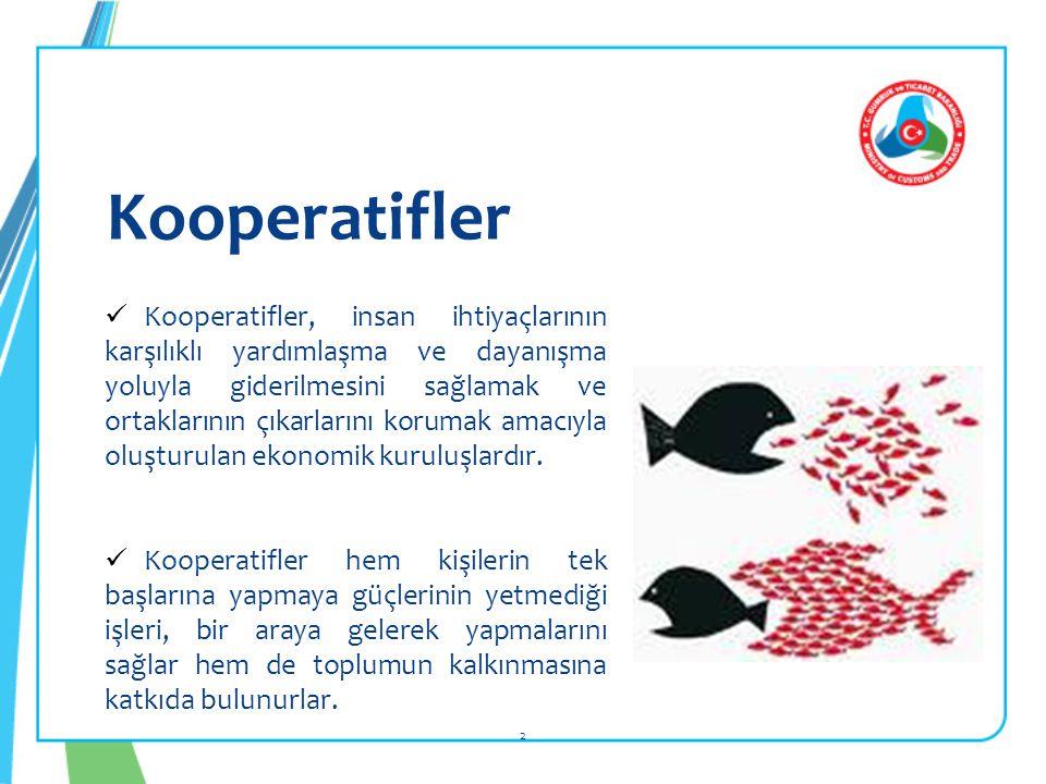 Kooperatifler 2  Kooperatifler, insan ihtiyaçlarının karşılıklı yardımlaşma ve dayanışma yoluyla giderilmesini sağlamak ve ortaklarının çıkarlarını korumak amacıyla oluşturulan ekonomik kuruluşlardır.