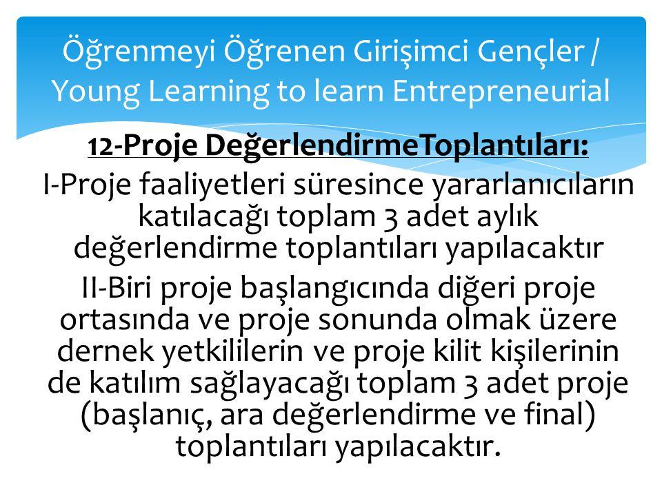 Öğrenmeyi Öğrenen Girişimci Gençler / Young Learning to learn Entrepreneurial 12-Proje DeğerlendirmeToplantıları: I-Proje faaliyetleri süresince yarar