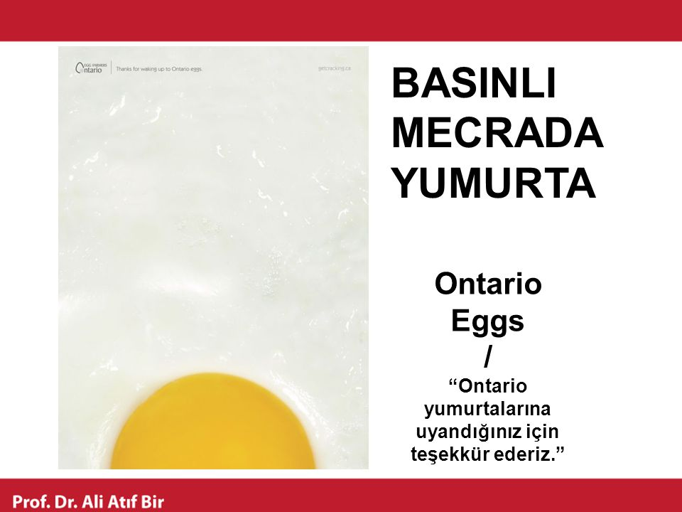 """Ontario Eggs / """"Ontario yumurtalarına uyandığınız için teşekkür ederiz."""" BASINLI MECRADA YUMURTA"""