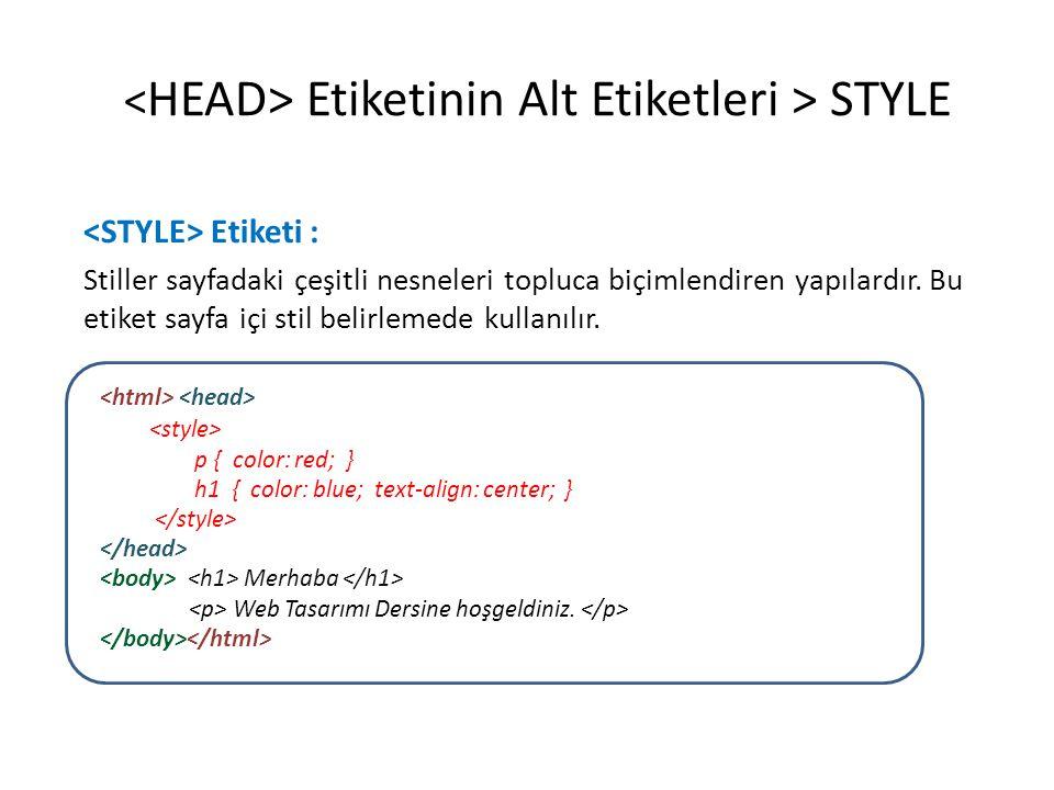 Etiketinin Alt Etiketleri > STYLE Etiketi : Stiller sayfadaki çeşitli nesneleri topluca biçimlendiren yapılardır. Bu etiket sayfa içi stil belirlemede