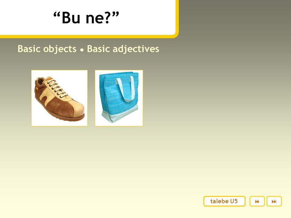 Bu ne? Basic objects ● Basic adjectives  talebe U5