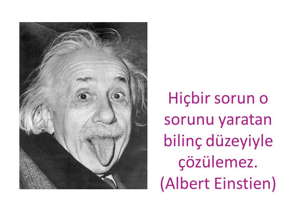 Hiçbir sorun o sorunu yaratan bilinç düzeyiyle çözülemez. (Albert Einstien)
