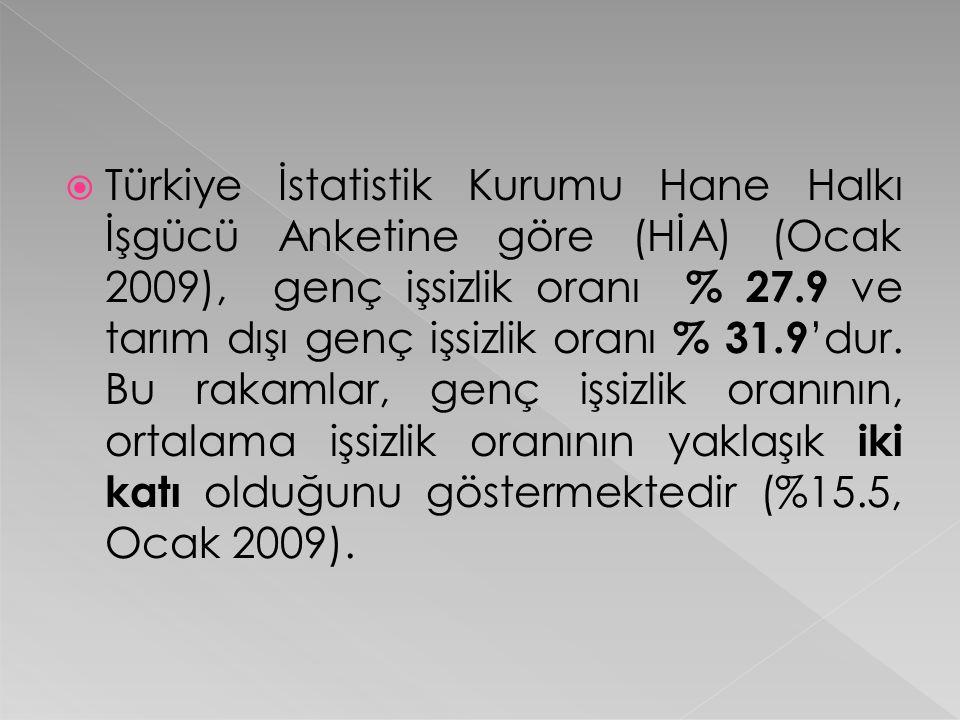  Türkiye İstatistik Kurumu Hane Halkı İşgücü Anketine göre (HİA) (Ocak 2009), genç işsizlik oranı % 27.9 ve tarım dışı genç işsizlik oranı % 31.9 'du